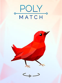 Poly Match